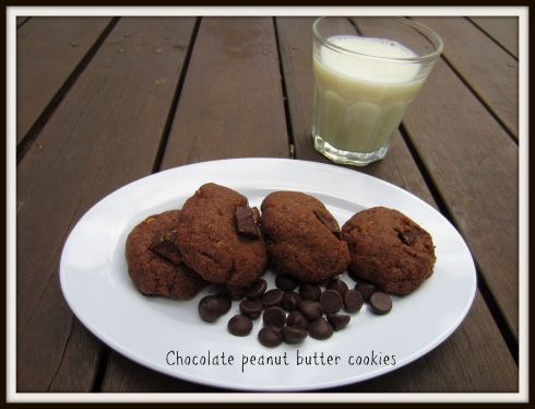 The Hungry Mum. Chocolate peanut butter cookies