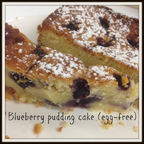 Blueberry pudding cake (egg-free)