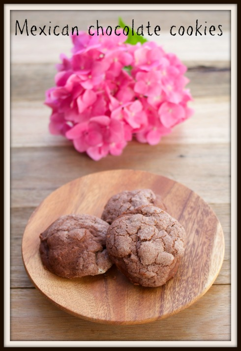 The Hungry Mum - Mexican chocolate cookies